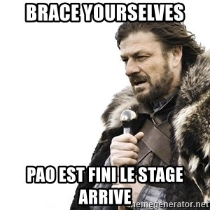 Winter is Coming - BRACE YOURSELVES pao EST FINI LE STAGE ARRIVE