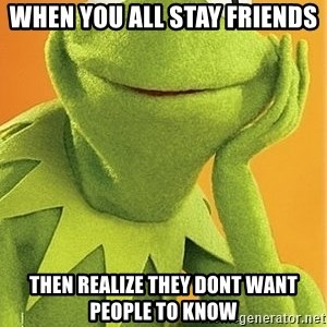 Kermit the frog - When you all stay friends Then realize they dont want people to know