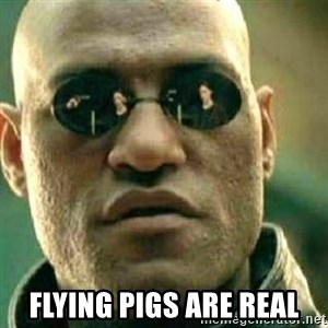 What If I Told You -  flying pigs are real