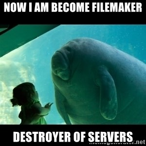 Overlord Manatee - now i am become filemaker destroyer of servers