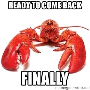 Unable to Relax and Have Fun Lobster - ready to come back finally