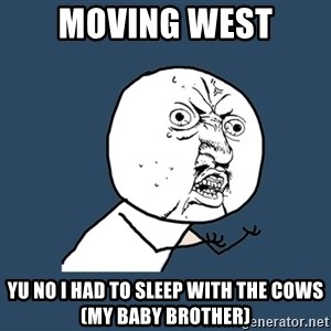 Y U No - Moving west Yu no i had to sleep with the cows (my baby brother)