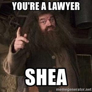 Hagrid - You're a Lawyer Shea