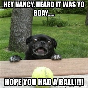 Ermahgerd Pug - Hey Nancy, HEARD it was yo bday..... Hope you had a BALl!!!!