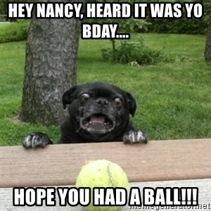 Ermahgerd Pug - Hey Nancy, heard it was yo Bday.... Hope you had a ball!!!
