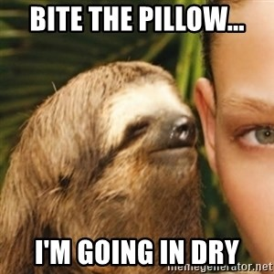 Whispering sloth - bite the pillow... i'm going in dry