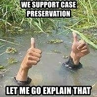nais gan - We support case preservation let me go explain that