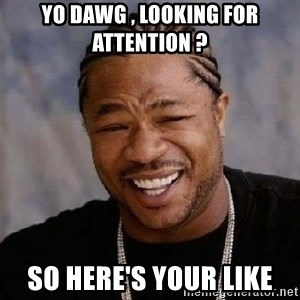 Yo Dawg - Yo dawg , looking for attention ?  So here's your like