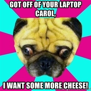Perplexed Pug - Got OFF of your Laptop Carol, I want some more cheese!