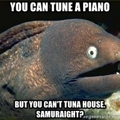 Bad Joke Eel v2.0 - You can tune a piano but you can't tuna house. Samuraight?