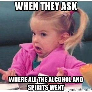 Wildbird girl - when they ask where all the alcohol and spirits went