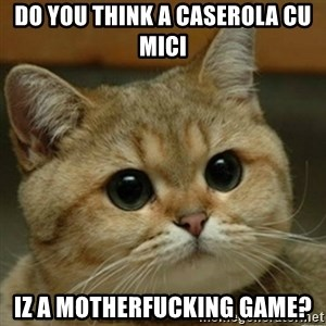 Do you think this is a motherfucking game? - do you think a caserola cu mici iz a motherfucking game?