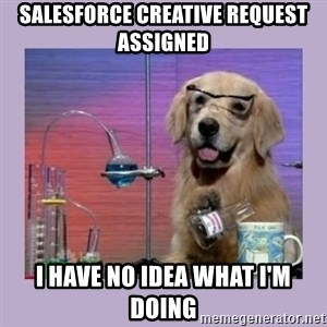 Dog Scientist - salesforce creative request assigned i have no idea what i'm doing