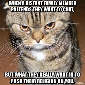 angry cat 2 - When a distant family member pretends they want to chat, But what they really want is to push their religion on you.