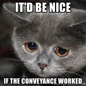 sad cat - it'd be nice if the conveyance worked