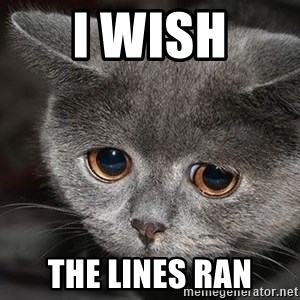sad cat - i wish the lines ran