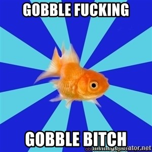 Absentminded Goldfish - gobble fucking gobble bitch