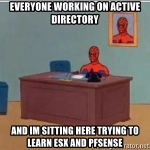 Spidermandesk - Everyone working on ACTIVE DIRECTORY And Im sitting here trying to learn ESX and pfsense