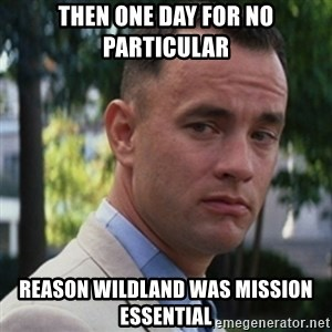 forrest gump - Then one day for no particular Reason wildland was mission essential