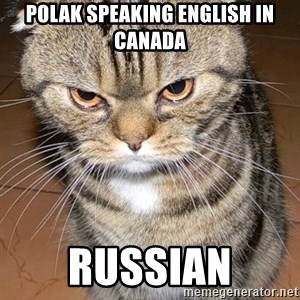angry cat 2 - Polak speaking english in canada Russian