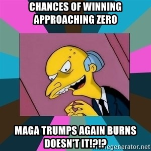 Mr. Burns - chances of winning approaching zero MAGA TrumpS AGAIN burns doesn't it!?!?