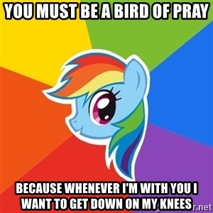 Rainbow Dash - You must be a bird of pray Because whenever i'm with you i want to get down on my knees