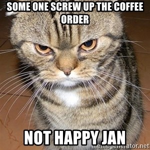 angry cat 2 - some one screw up the coffee order NOT Happy Jan