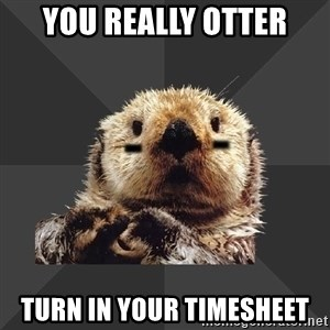 Roller Derby Otter - YOU REALLY OTTER TURN IN YOUR TIMESHEET