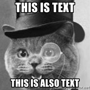 Monocle Cat - this is text this is also text