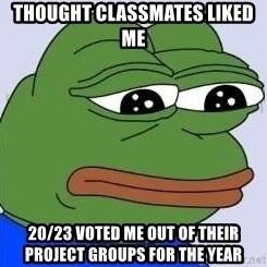Sad Frog Color - THOUGHT Classmates LIKED me 20/23 Voted ME OUT OF their PROJECT GROUPS FOR THE YEAR