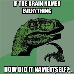 Velociraptor Xd - If the brain names everything How did it name itself?