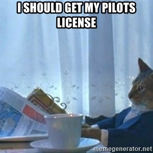 Sophisticated Cat - I should get my pilots license
