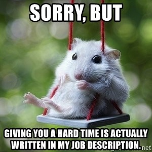 Sorry I'm not Sorry - Sorry, but giving you a hard time is actually written in my job description.