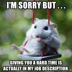 Sorry I'm not Sorry - i'm sorry but . . . giving you a hard time is actually in my job description.