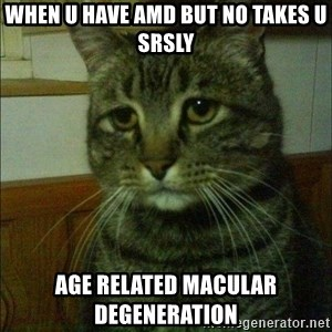 Depressed cat 2 - When u have amd but no takes u srsly Age Related Macular Degeneration