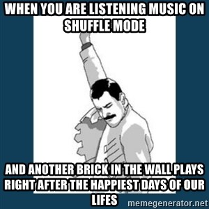 Freddy Mercury - When you are listening music on shuffle mode  and another brick in the wall plays right after the happiest days of our lifes