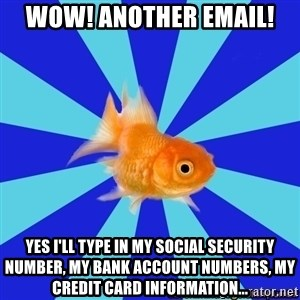 Absentminded Goldfish - wow! another email! yes I'll type in my social security number, my bank account numbers, my credit card information...