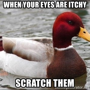 Malicious advice mallard - When your eyes are itchy Scratch them