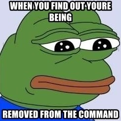 Sad Frog Color - when you find out youre being  removed from the command