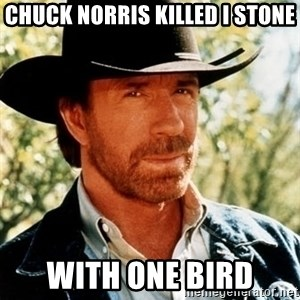 Brutal Chuck Norris - ChuCk norris killed i sTone With one bird