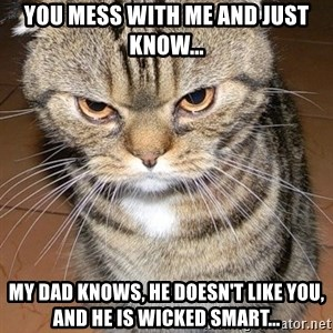 angry cat 2 - you mess with me and just know... my dad knows, he doesn't like you, and he is wicked smart...