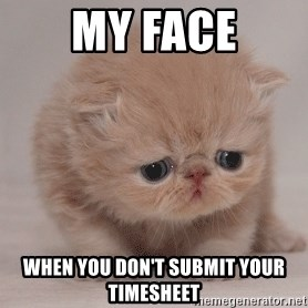 Super Sad Cat - my face when you don't submit your timesheet