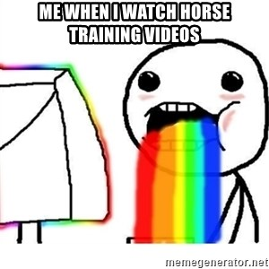 Puking Rainbows - me when i watch horse training videos