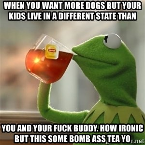 Kermit The Frog Drinking Tea - When you want more dogs but your kids live in a different state than   You and your fucK buddy. How ironic but this some bomb ass tea yo