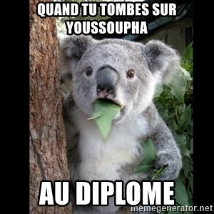 Koala can't believe it - Quand tu tombes sur youssoupha Au diplome