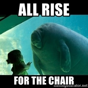 Overlord Manatee - All rise  for the chair