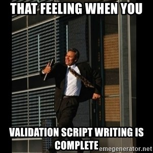 HAHA TIME FOR GUY - THat feeling when you  validation script writing is complete