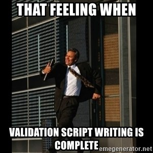 HAHA TIME FOR GUY - THat feeling when  validation script writing is complete