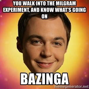 Sheldon Big Bang Theory - you walk into the milgram experiment, and know what's going on  bazinga