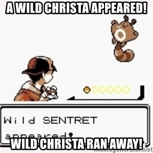 a wild pokemon appeared - A wild christa appeared! Wild christa ran away!